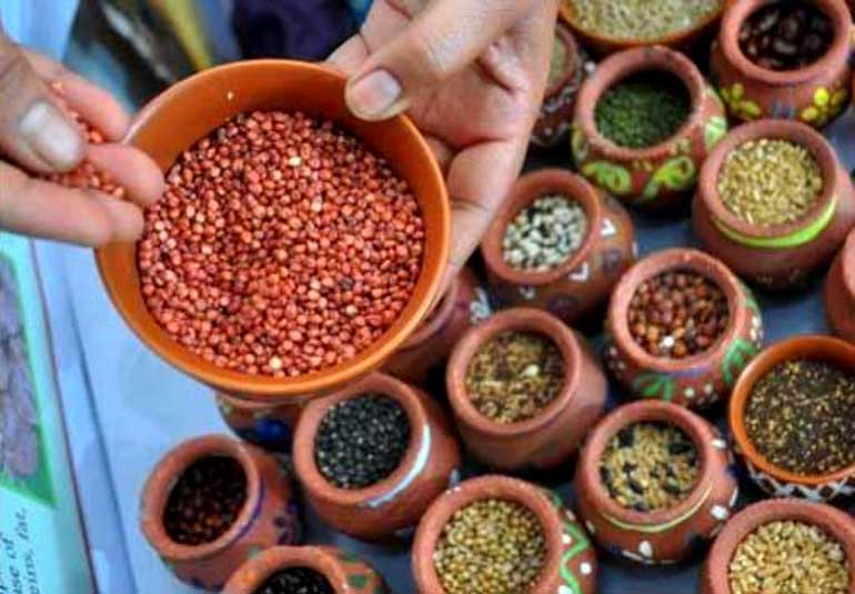 Mumbai Workshop: Get Cooking At This Healthy Magic Millet Class
