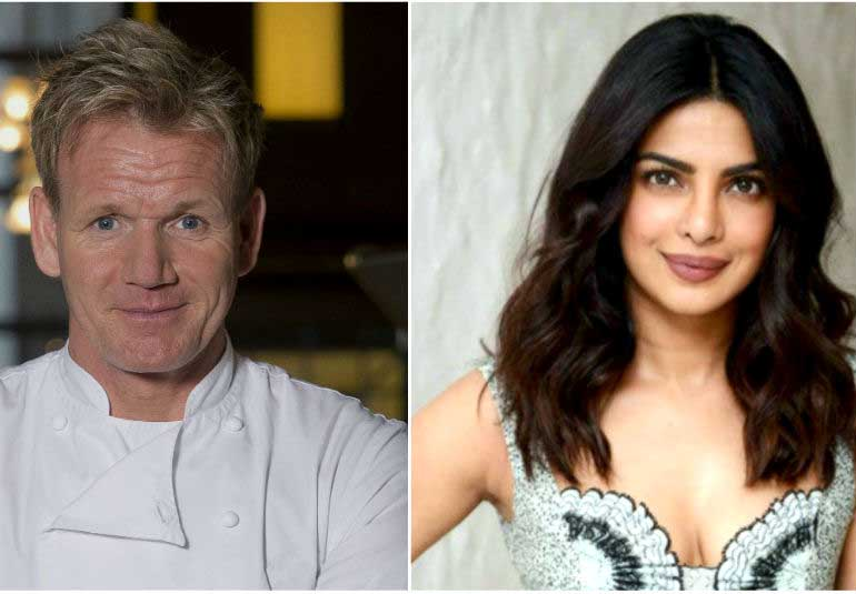 Did Gordon Ramsay Call Pee Cees Khichdi As Dogs Dinner?