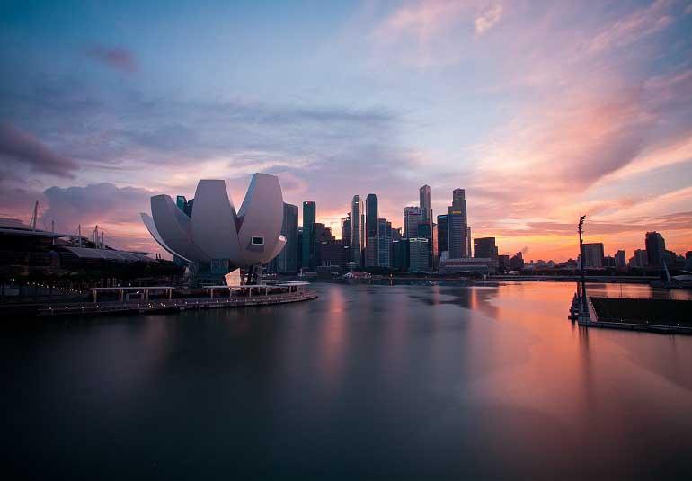 Top Veggie-Friendly Restaurants in Singapore