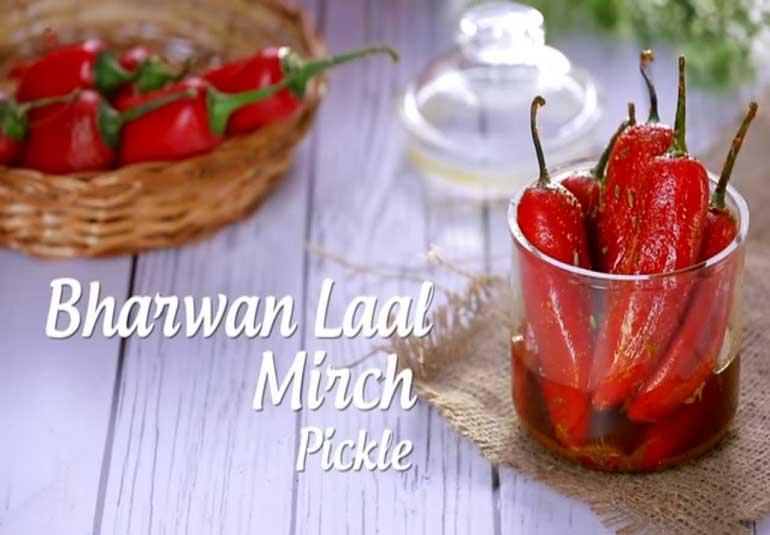 Pickles of India : Stuffed Red Chilli Pickle | Bharwa Lal Mirch Ka Achaar
