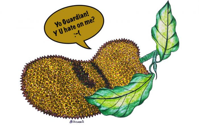 Jackfruit Illustration by Shreya Jalavadia