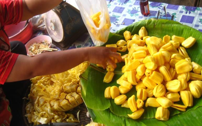 An Open Letter in Defence of Chakka aka Jackfruit