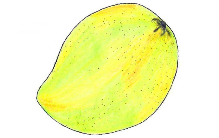 Himsagar Mango