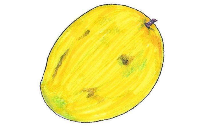 Rajapuri Mango