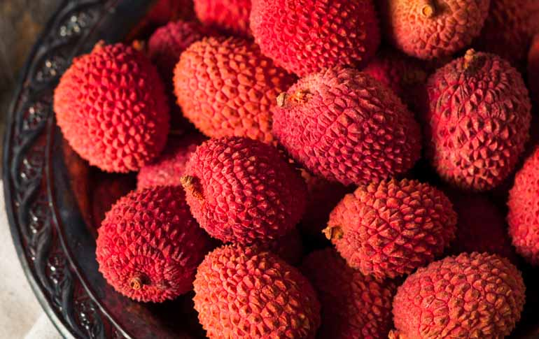Fatal Litchi is Killing Hundreds of Children in Bihar Every Year