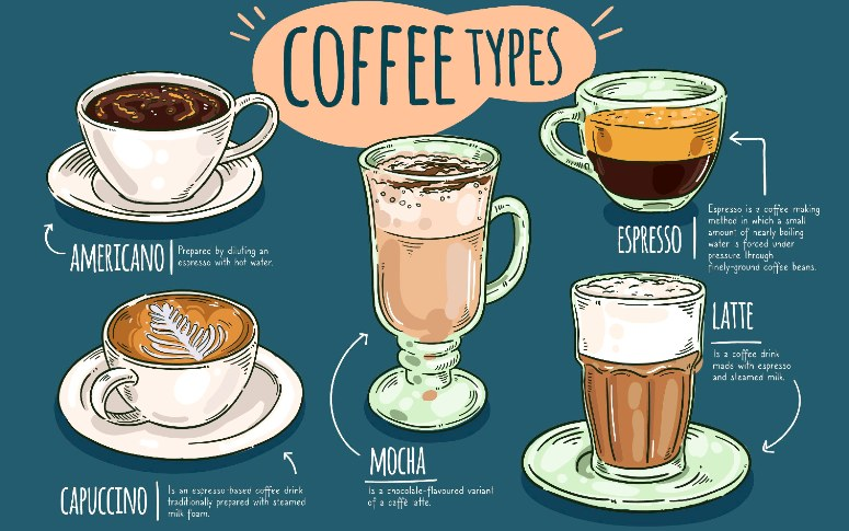 Beginners Guide To Types Of Coffee: Understanding The Basics